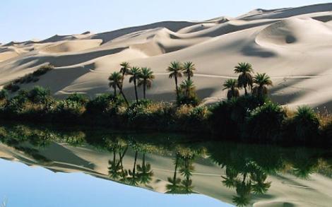 desertf-jpg