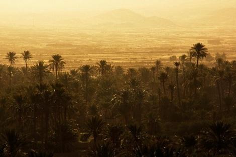 Moroccan-Landscape